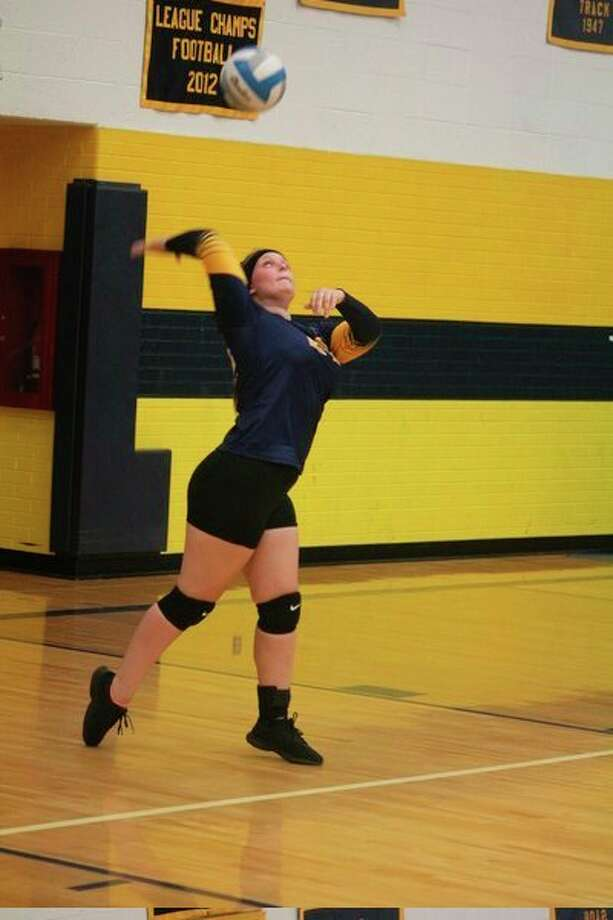 Abby Oisten gets set to serve for Baldwin in recent action. (Star photo/John Raffel)