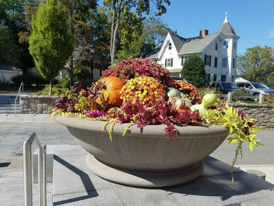 An autumn bouquet welcomes visitors to New Canaan Town Hall, on Sept. 25. Photo: Grace Duffield / Hearst Connecticut Media