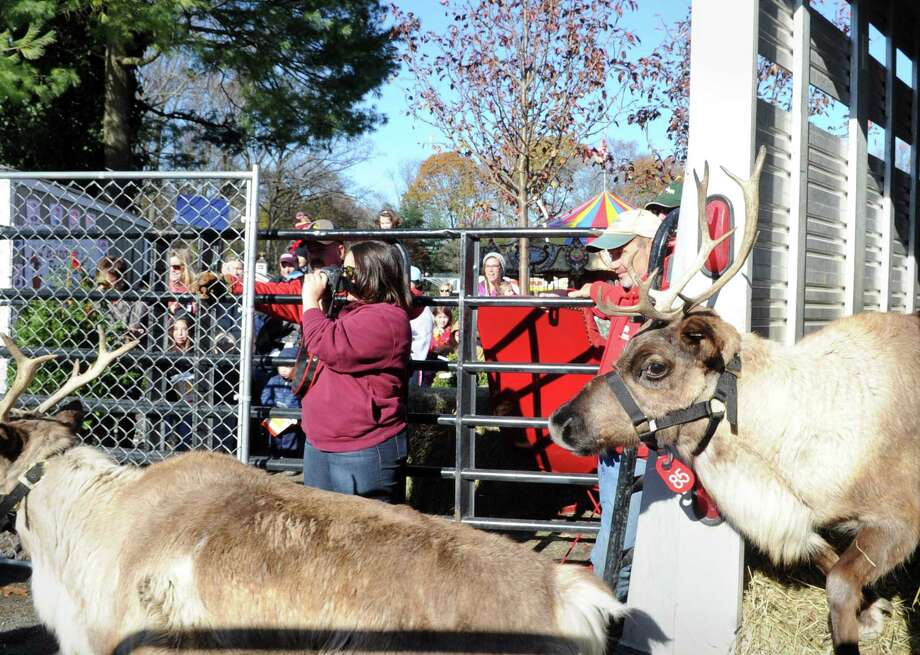 Santa and his live reindeer will return for the 11th annual Greenwich Reindeer Festival & Santa's Village at Sam Bridge Nursery & Greenhouses November 29 to December 24. Photo: Bob Luckey Jr. / Hearst Connecticut Media File Photo / Greenwich Time
