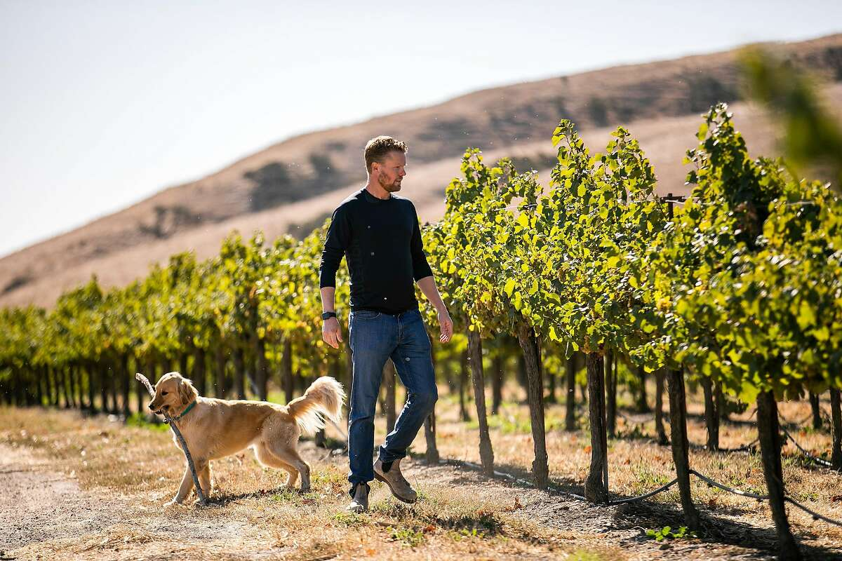 Paul Johnson walks through his vineyard with his dog Pheiffer at Johnson Vineyard Company on Wednesday, October 2, 2019 in King City, Calif.