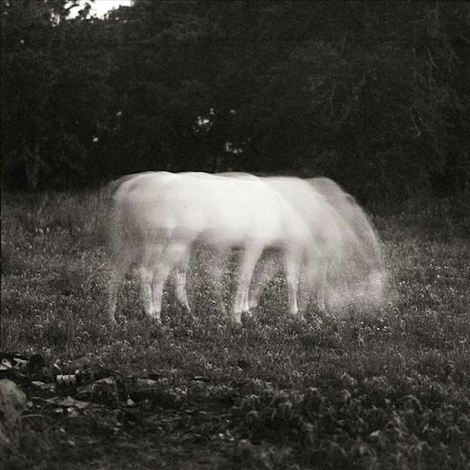 """White Horse in Moonlight,"" 1984 Photo: Keith Carter / From ""Keith Carter: 50 Years"""