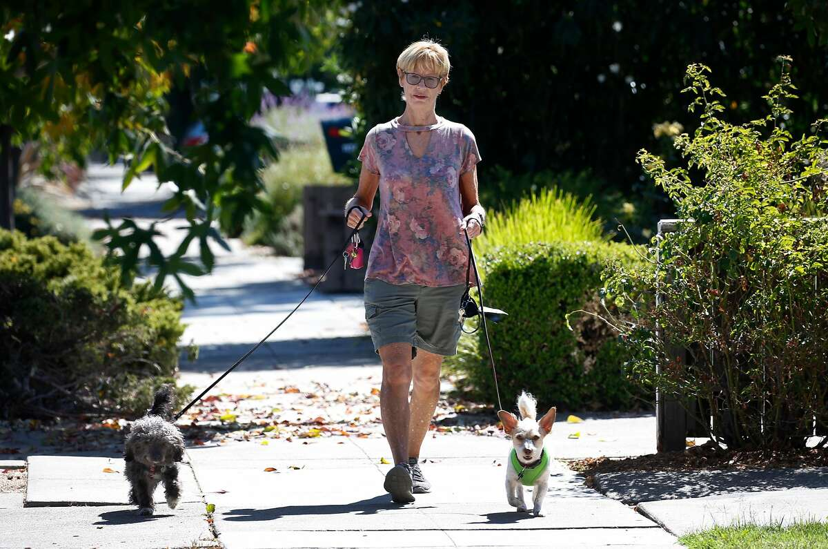 Shelly St. John walks her client's dogs Charlotte (left) and Milo in Redwood City, Calif. on Thursday, Sept. 26, 2019. St. John owns and operates Mikey and Shelly's Pampered Pets dog walking service with her husband and hires six independent contractors to help them out. With the passage of AB5, the gig work bill, St. John is worried about the future of their small business.