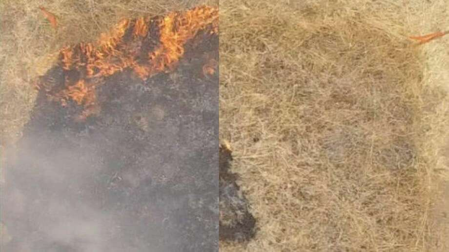 The image on the left shows an untreated area of grass, while the image on the right shows how a fire died inside a treated area. Photo: Eric Appel