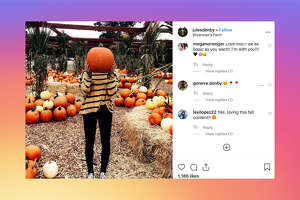 Now, it's all about you: the autumnal glow on your smiling, seasonally appropriate face, and the decorative gourd placed just-so in your lap for your Instagram followers to admire.
