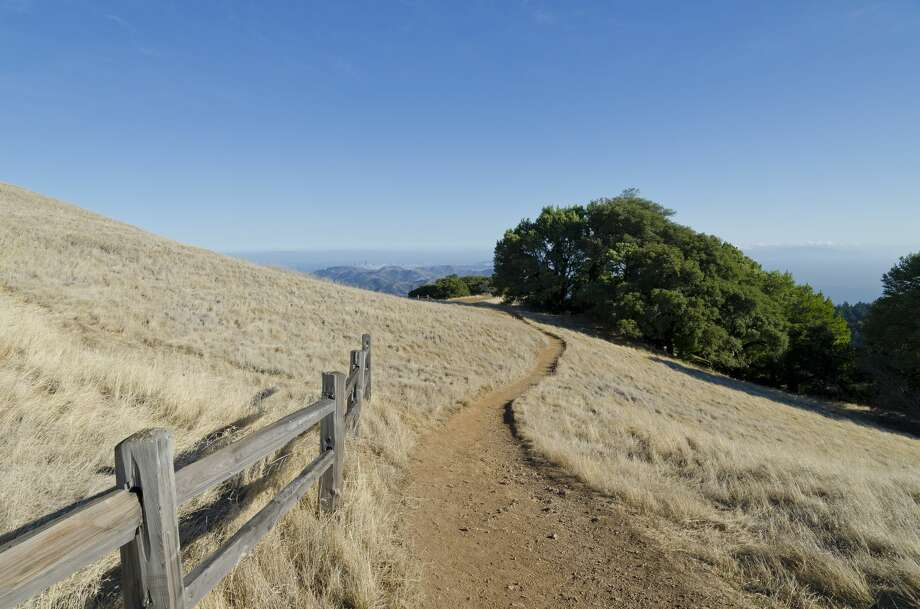 Dry winds, low humidity and hot temperatures are bringing critical fire weather to the North Bay Hills. Pictured is a hiking trail in Mt. Tamalpais State Park. Photo: Andreaskoeberl.com/Getty Images
