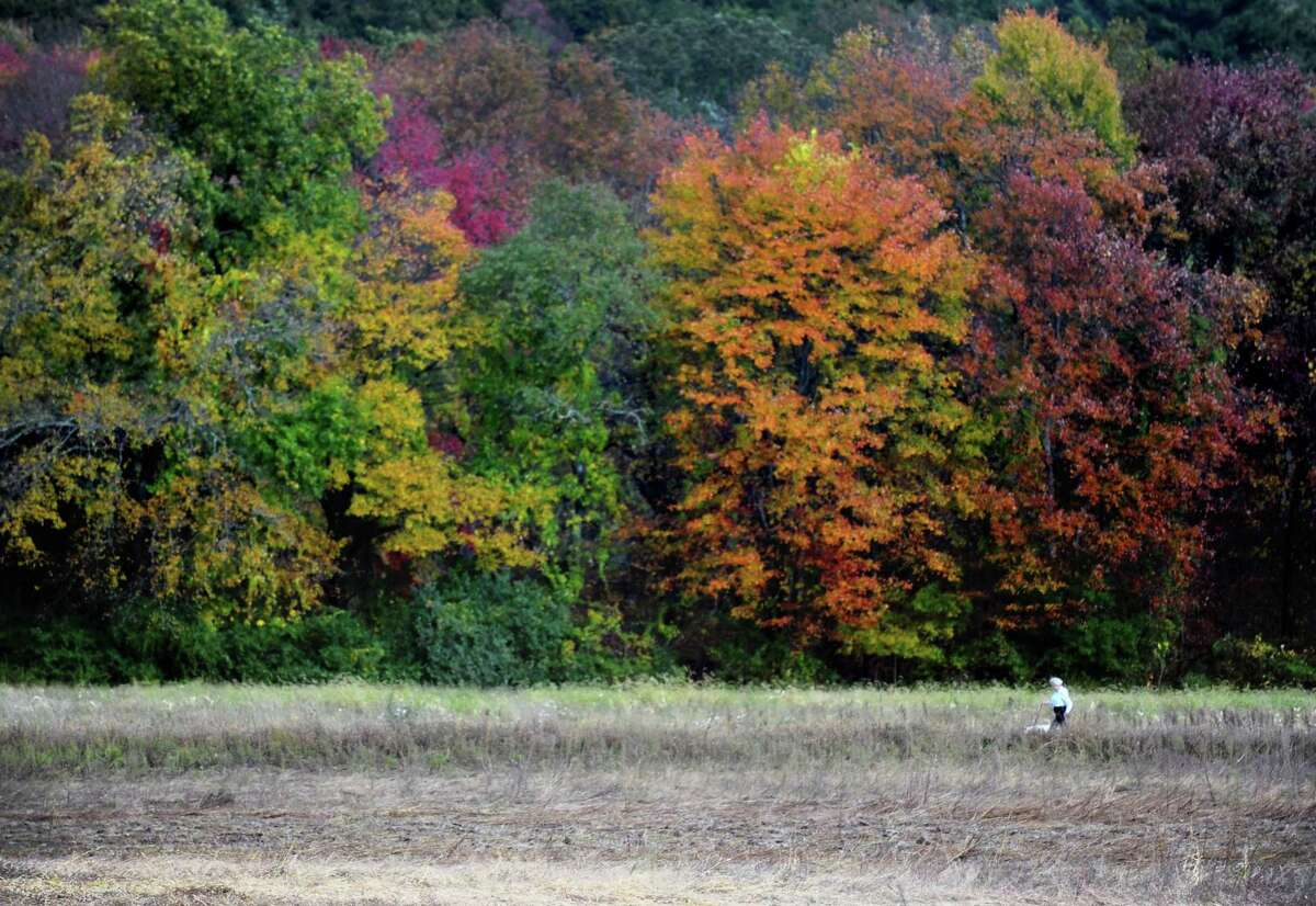 A woman walks her dog through the trails behind the Newtown dog park on Oct. 14, 2014. The scenic trails offer views of the fall foliage at its peak.