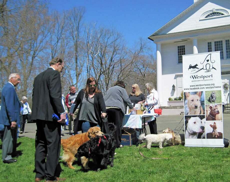 On Oct. 6, from noon to 2 p.m., a Blessing of the Animals will be held on the Saugatuck Congregational Church's front lawn to honor all animals, from pets to wildlife. The Rev. Alison Buttrick Patton will lead the service. Photo: Contributed
