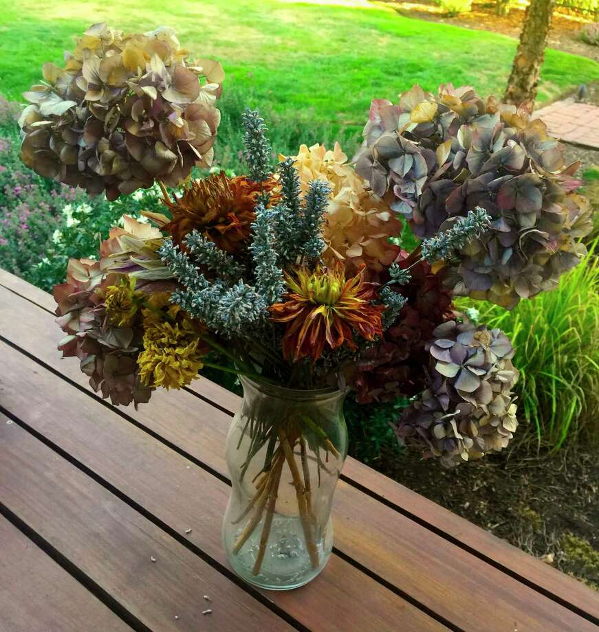This Aug. 12, 2019 photo shows fresh cut flowers in Langley, Wash. Flowers that are cut for drying should be almost fully bloomed, like these shown here. Many methods are available for flower drying including using drying agents, dehydrators, microwave and standard ovens but most people simply hang them upside down by their stems for a couple of weeks in a dark, dry room. (Dean Fosdick via AP) Photo: Dean Fosdick / Dean Fosdick