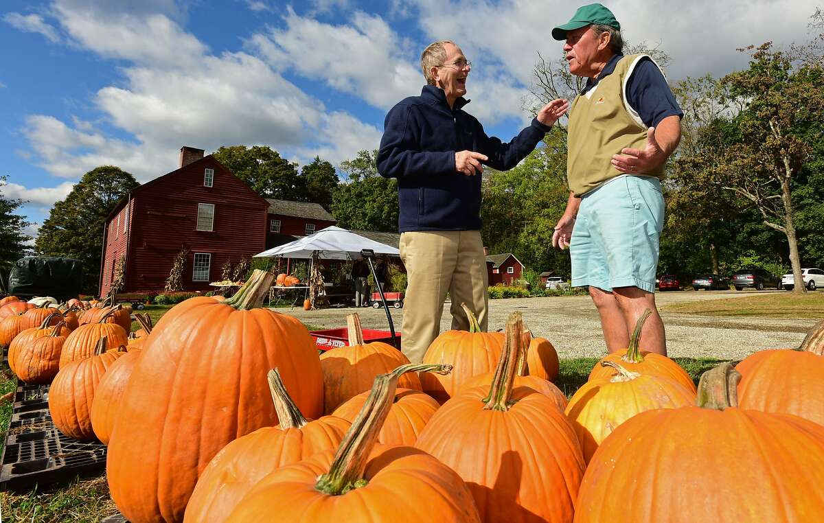 The Great Wilton Pumpkin Fest, Wilton Pumpkins and cider and games, oh my! Celebrate fall at The Great Wilton Pumpkin Fest Saturday. Find out more about the The Great Wilton Pumpkin Fest.