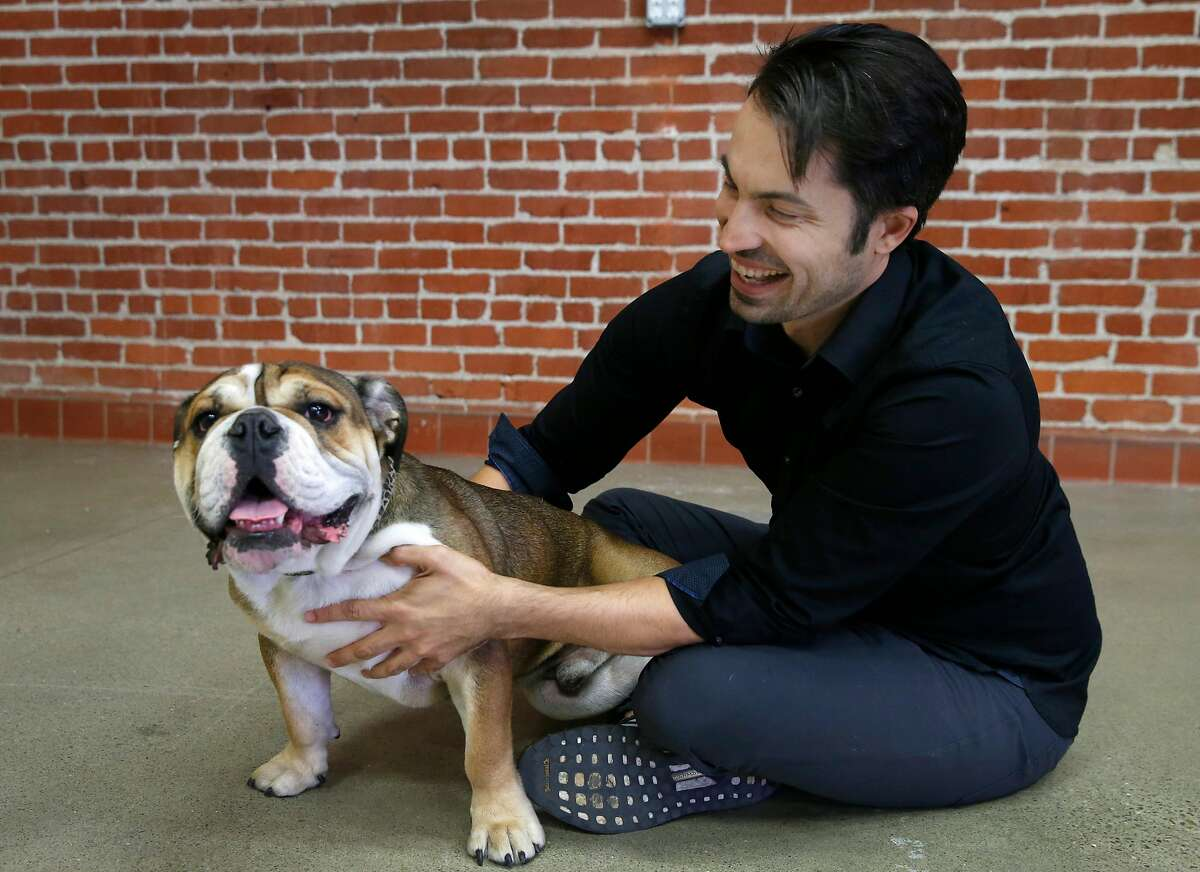 Ryan Bethencourt, CEO of Wild Earth, plays with his foster dog Roscoe at the vegan dog food company's headquarters in Berkeley, Calif. on Friday, Oct. 4, 2019.