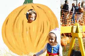 The Boys and Girls Club of Milford held its annual Pumpkins on the Pier event on October 4 and 5, 2019. Families enjoyed food trucks, activities for kids and, of course, pumpkins. Were you SEEN?