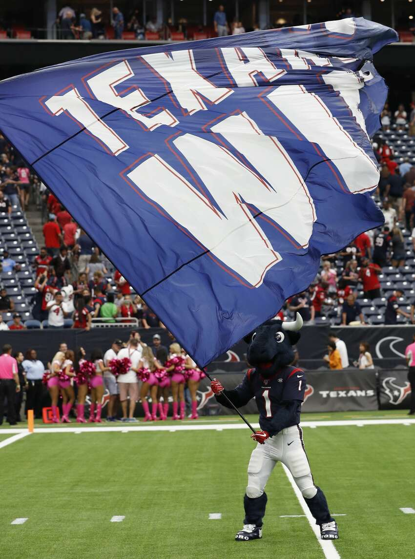 Houston Texans mascot waves a