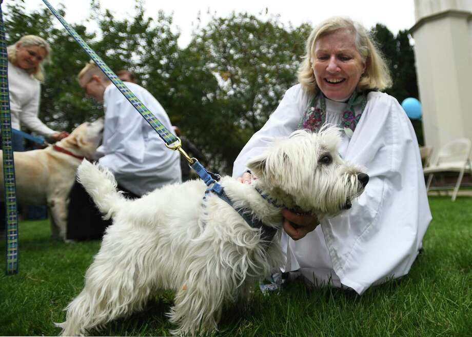 Rev. Peggy Hodgkins says a blessing for Happy, a West Highland white terrier belonging to Julie Johnson, of Fairfield, at the annual Blessing of the Animals service at Trinity Episcopal Church in Southport, Conn. on Sunday, October 6, 2019. Photo: Brian Pounds / Hearst Connecticut Media / Connecticut Post