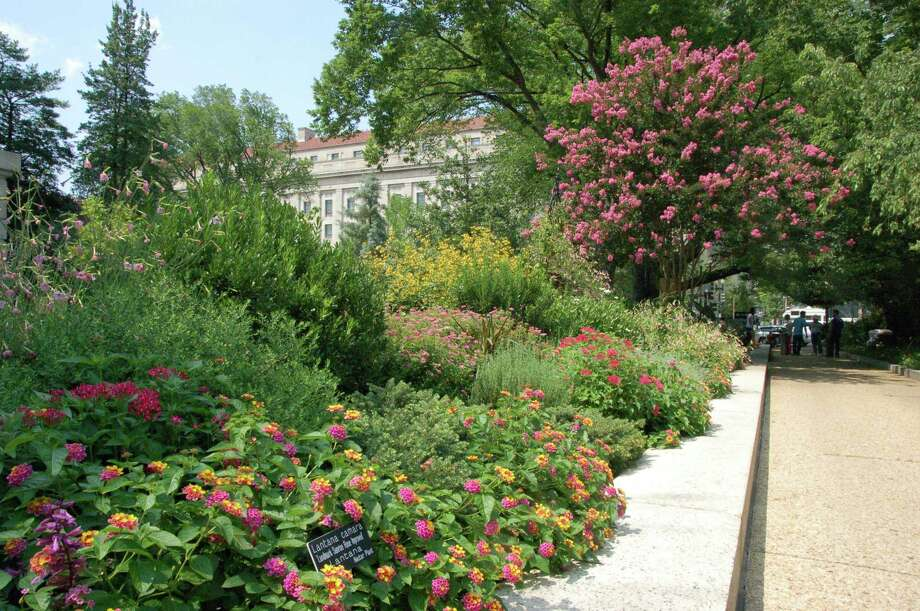 Smithsonian Gardens created a pollinator garden outside the National Museum of Natural History in Washington. It features 230 plant species to attract pollinators, but you can do the same on a smaller scale in your backyard. Photo: James Gagliardi/Smithsonian Gardens / Smithsonian Gardens