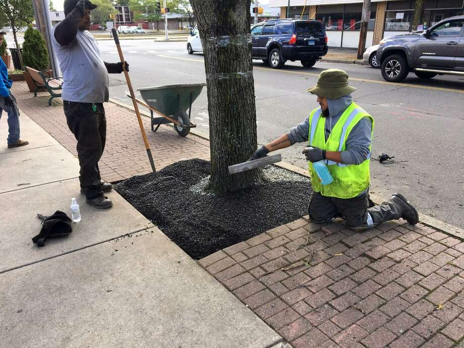 A crew from Tri State Flexi Pave Inc. of Danbury installs a new flexible, porous pavement material in one of Campbell Avenue's 60 tree pits on Oct. 4. Photo: Leo Kelly / Contributed