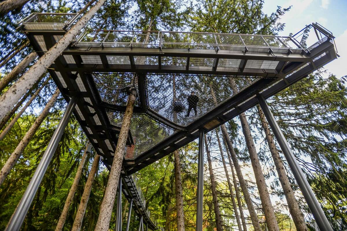 Guests explore the Whiting Forest Canopy Walk on Monday, Oct. 7, 2019, the one-year anniversary of its opening day. (Katy Kildee/kkildee@mdn.net)