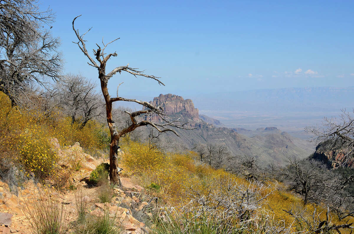 On Saturday, October 5th, Big Bend National Park was notified that a solo hiker had collapsed and stopped breathing near the Emory Peak Trail junction in the Chisos Mountains.