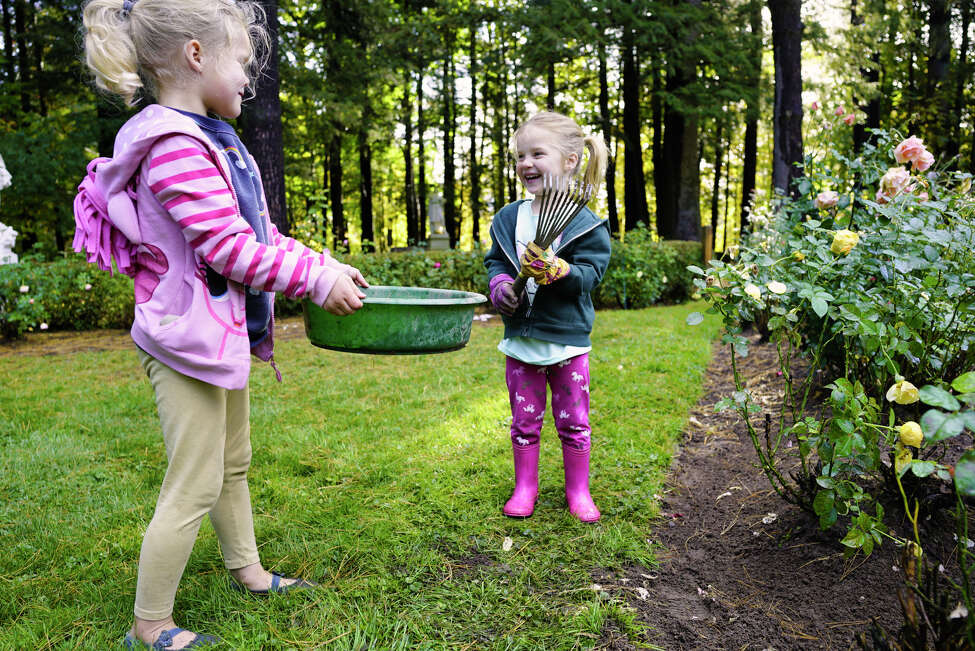 Sisters, Adeline Turayev, 5, left, and Rosie Turayev, 3, help volunteer at Yaddo gardens on Tuesday, Oct. 8, 2019, in Saratoga Springs, N.Y. Volunteers and BOCES horticulture students worked in the gardens on Tuesday preparing the grounds for the winter. BOCES students have been working with volunteers at the gardens for the past 20 years. (Paul Buckowski/Times Union)