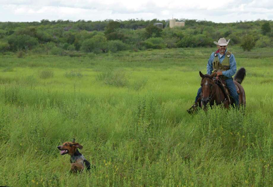 Zeke Ortiz of Texas Canine Tracking and Recovery works with a dog during a recent training session. Photo: Billy Calzada / San Antonio Express-News