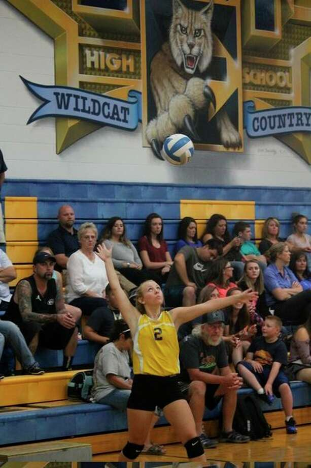 Evart's Kaylee Ladd gets set to serve during a match. (Herald Review file photo)