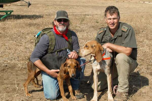 Joe Braman (left) of Texas Canine Tracking and Recovery, and Johan van Straaten, K9 manager at Southern African Wildlife College, pose with two Texas-bred and -trained coonhounds in Africa.