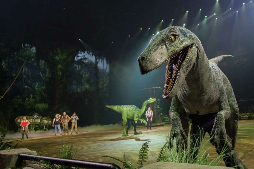 Blue, the velociraptor and Jeanie, a Troodon roam in the Adventure Zone in Jurassic World Live Tour. (Feld Entertainment)