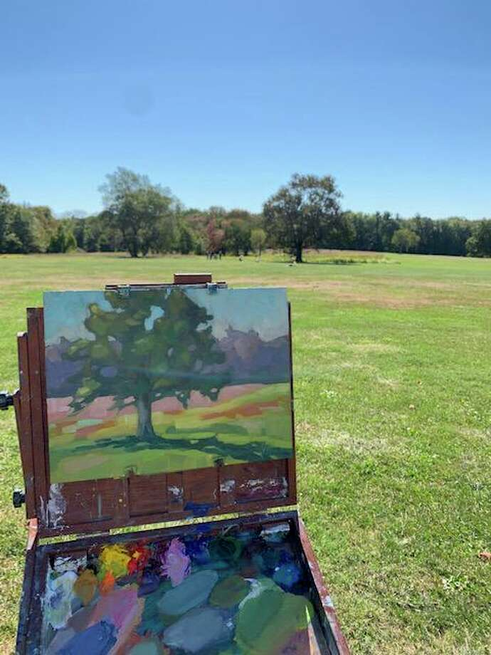 A Waveny Park work in progress by Britt Bair. Photo: Contributed Photo.