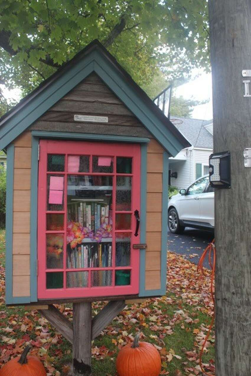 The JohnnyCake Lane Library, a Little Free Library in Averill Park. (Photo by Donna Liquori)