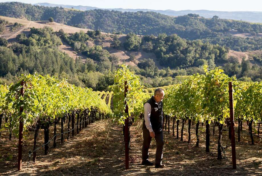 On-site customer director Philip Hansell walks through the vineyards where workers halted harvesting operations at the Hess Winery in Napa, Calif. Thursday, Oct. 10, 2019 after the winery closed due to a PG&E Public Safety Power Shutoffs across Northern California. Photo: Jessica Christian / The Chronicle