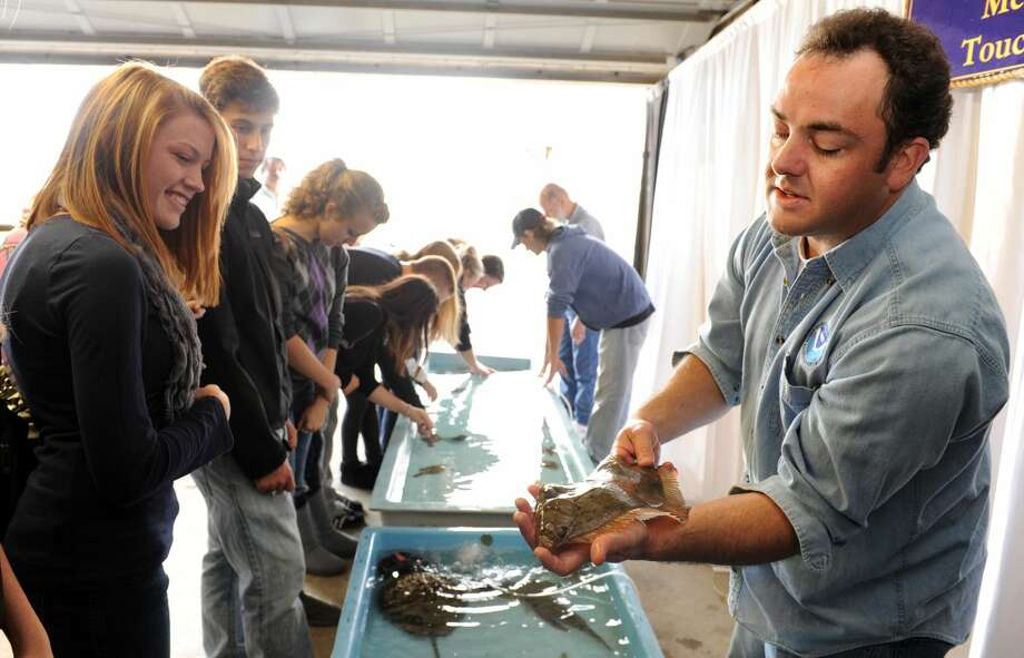 Students check out a flounder during a previous open house at the National Oceanic and Atmospheric Agency lab in Milford.