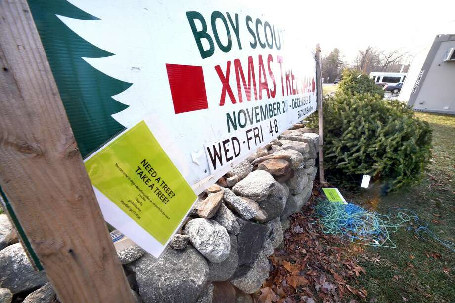 A sign reads NEED A TREE? TAKE A TREE! by the remaining dozen Christmas trees that are part of a Xmas tree sale by Boy Scout Troop 63 on the grounds of the old Woodbridge firehouse.