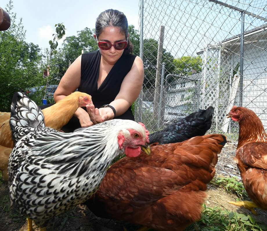 Melissa Marguy feeds her chickens at Sugaree Acre Farm in Orange.