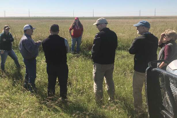 About 20 local citizens took part in Ogallala Commons' Playa Field Day that was held in Floydada on Tuesday morning.