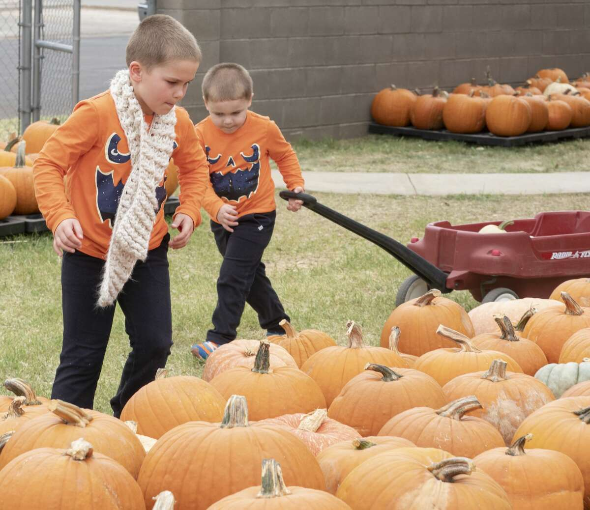 Noah Pavelock, in scarf and his brother Jacob pick out pumpkins as their family browse 10/12/19 at the St. Luke's United Methodist Pumpkin Patch. Tim Fischer/Reporter-Telegram