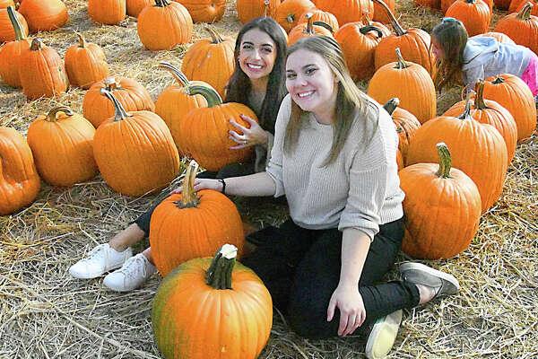 Pumpkin-picking season was in full swing on October 13, 2019. Were you SEEN at Jones Family Farm in Shelton?