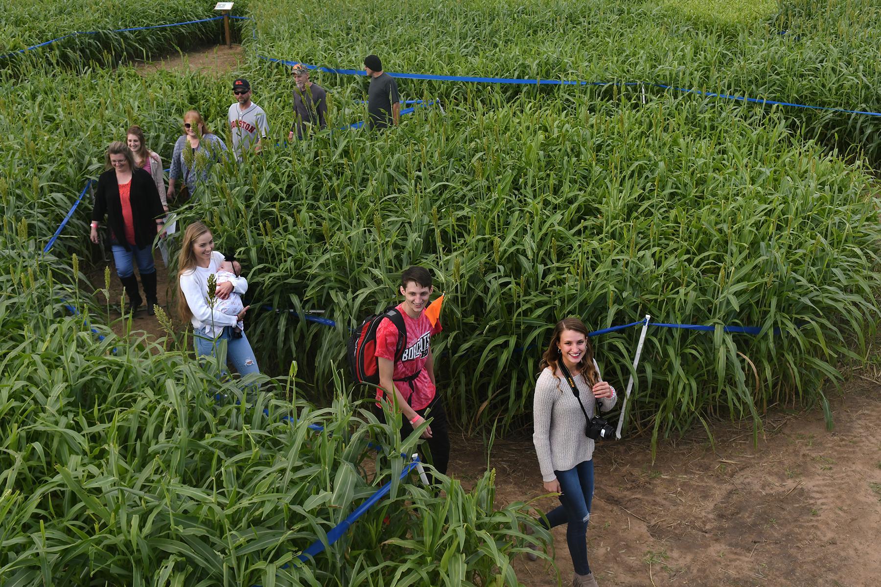 Tomball Corn Maze celebrates opening day of fourth season