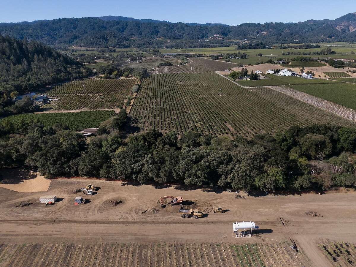Farmer Tom Gamble has given 10 acres of land along sides of the Napa River (tree lined) so it can flow naturally on Saturday, Oct. 5, 2019, in Napa, Calif.