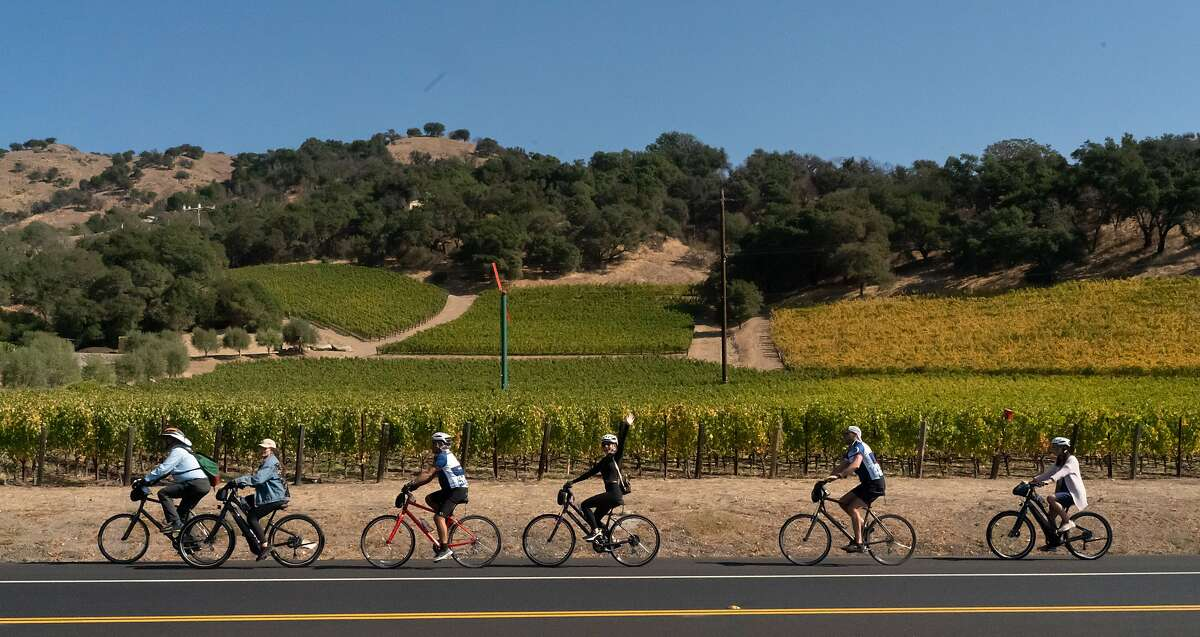 A group from the Napa Valley Bike Tours & Rentals pass vineyards on Saturday, Oct. 12, 2019, in Yountville, Calif.