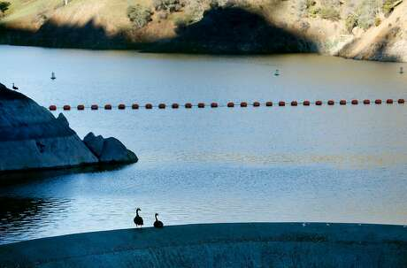 Canada geese perch on the rim of the Monticello Dam glory hole spillway at Lake Berryessa near Winters, Calif. on Thursday, Dec. 27, 2018.