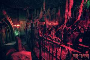 A red-room view of Fright Haven in Stratford.