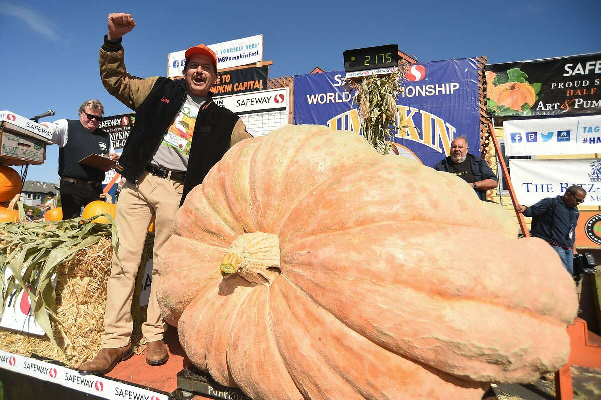 """Leonardo Urena from Napa celebrates after his Atlantic Giant pumpkin weighed in at 2175 pounds, a new California record, to win the Safeway World Championship Pumpkin Weigh-off on October 14, 2019 in Half Moon Bay, CA. """"I've really enjoyed growing it,"""" said Urena, who has been growing competitive giant pumpkins, gourds, watermelons, beets and tomatoes for 20 years. """"It's one of the most aggressive plants I've grown."""""""