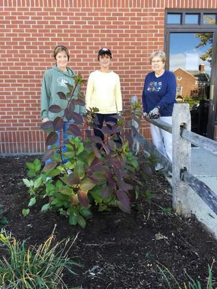 Submitted Photo by Cindy Golia North Haven Garden Club members Carol Stauugard, Lee Fermo, and Bene Jablonski work on the redesign of the North Haven Library Entrance Garden Beds.