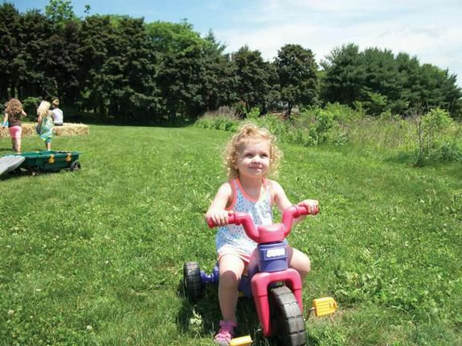 Photo by Lynn Fredricksen Brynn Gilbey, 3, of Hamden, spent a sunny afternoon enjoying a tricycle, baby goats and lots of strawberries when she and her father, John Gilbey, visited the annual strawberry festival at Hindinger Farms on Saturday.