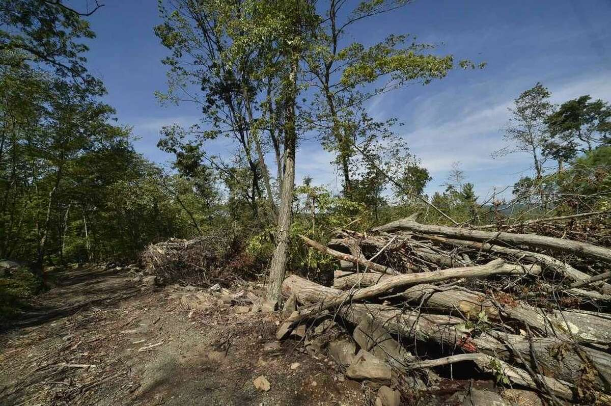 Sleeping Giant State Park, hit hard by a tornado in May, has gone a long way in clearing downed trees on the Tower Trail and the Pine Grove picnic area is still in the difficult process of cleaning up the heavily damaged area.