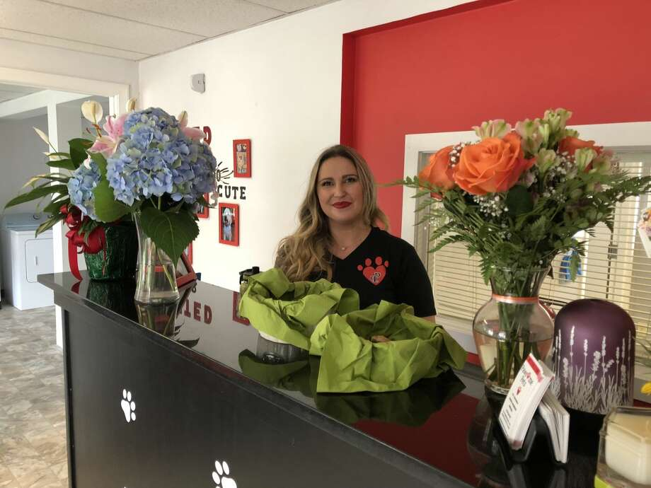 "Eniko McBrien is hoping to make dogs and their owners smile as she opens ""Pawsome Pets,"" a new pet grooming facility, on Washington Avenue in North Haven."