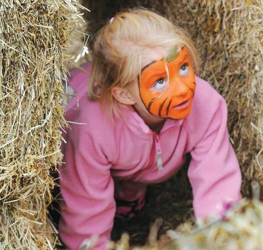 Photo by Melanie Stengel Emily Haag, 6, of Hamden, makes her way through a hay bale maze at the 11th Annual Brooksvale Fall Festival Saturday.