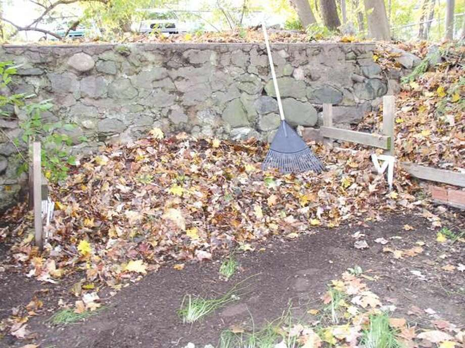 Submitted Photo Autumn leaves are the perfect ingredient for spring planting.