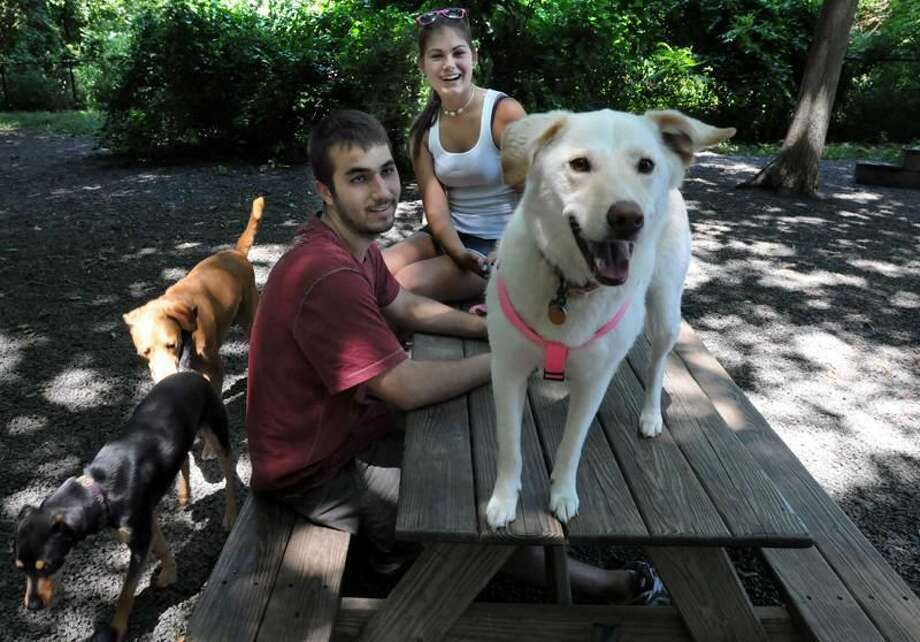 Photo by Mara Lavitt The Hamden Dog Park on Waite St. Park goers Nick Wachter and Maria Manukas both of Hamden with their dog Neno left found the other dogs entertaining including Gracie second from left and Molly on the table.