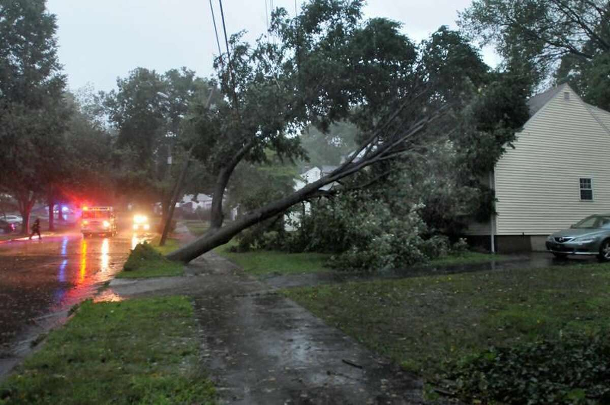 New Haven- Tree down on Beverly Rd. in New Haven. Melanie Sttengel/Register