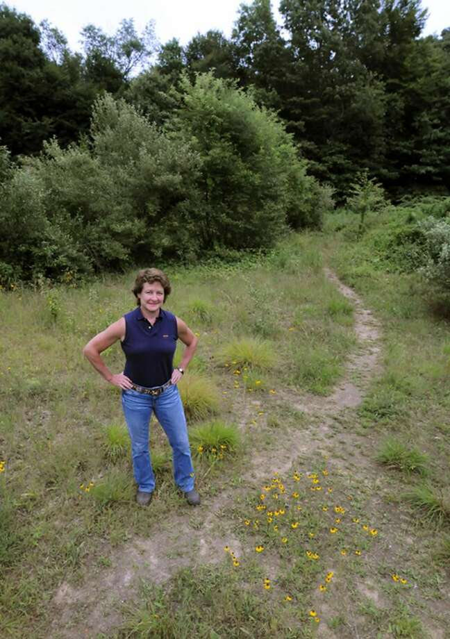 YPEC (Yale Polo & Equestrian Center) manager Liz Brayboy of Harwinton stands in the area of land in East Rock Park that is being considered for a community equestrian facility. Mara Lavitt/New Haven Register7/13/12